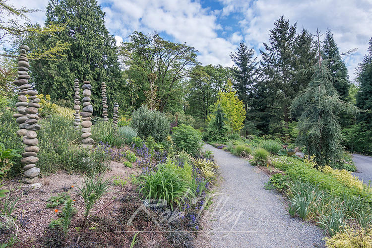 USA, Washington, Bellevue, Bellevue Botanical Garden