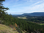 Scenes on Turtleback Mountain, Orcas Island, near Colt's campsite.