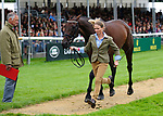 30th August 2017. Sarah Ennis (IRL) riding BLM Diamond Delux during the First Horse Inspection of the 2017 Burghley Horse Trials, Stamford, United Kingdom. Jonathan Clarke/JPC Images