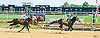 Toastmaster winning at Delaware Park on 8/18/16