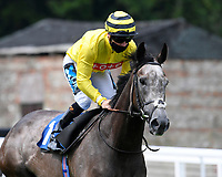 Perfect Inch ridden by Stevie Donohoe goes down to the start  of The British Stallion Studs EBF Upavon Fillies' Stakes  during Horse Racing at Salisbury Racecourse on 13th August 2020