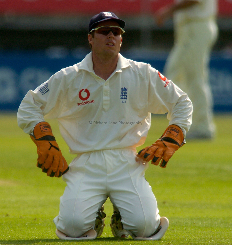 Photo. Glyn Thomas. England v West Indies. Second Test Day Two. Edgbaston. 30/07/2004..Geraint Jones on his knees....