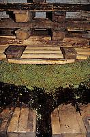 Europe/France/89/Yonne/ Chablis: Pressoir à Abbattage du XVIII aux Caves de l 'Obédiencerie du Domaine Laroche -Chablis AOC