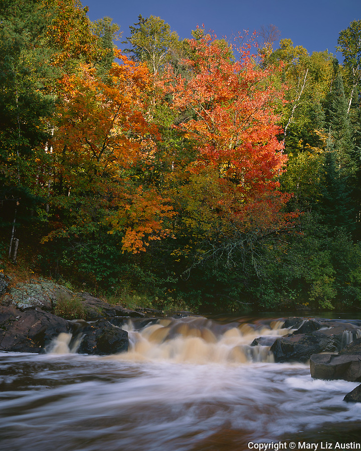 Pattison State Park, WI<br /> Small falls on the Black River with hardwood forest in autumn colors.