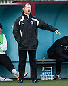 Queen of the South player manager Allan Johnston.