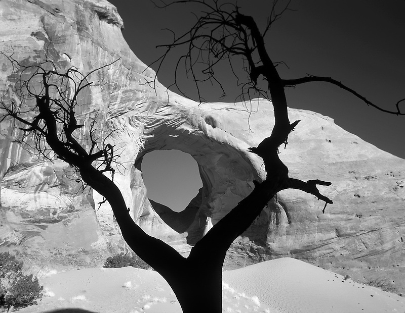 End of the Wind Arch. with dead silhouetted tree. Monument Valley, Arizona