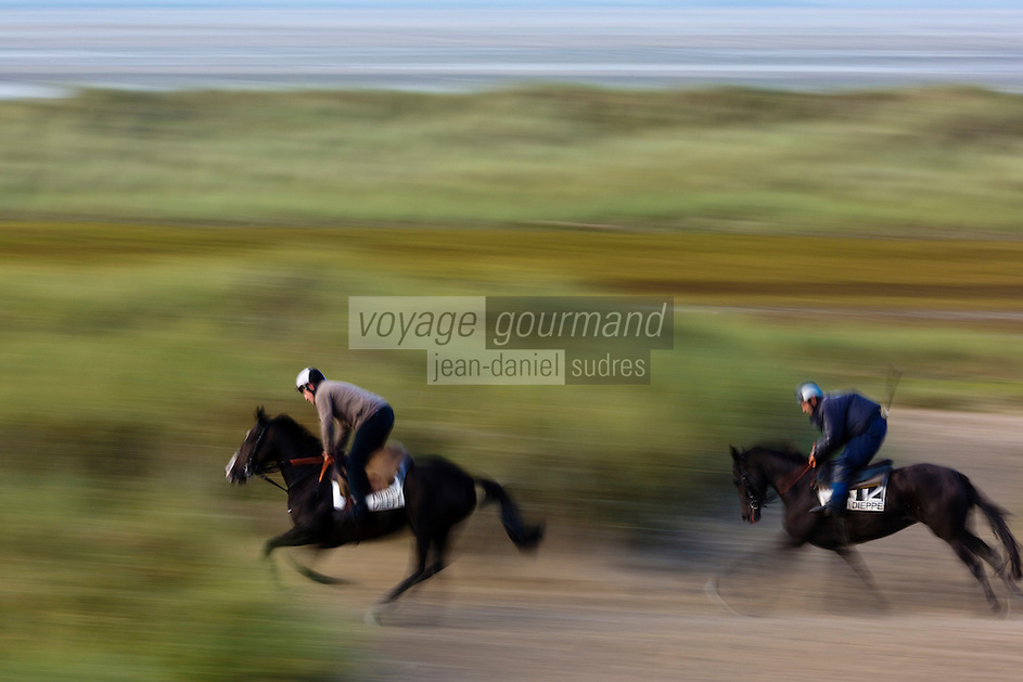 Europe/France/Normandie/Basse-Normandie/50/Baie du Mont-Saint-Michel/Env de Genêts:  Dunes de Dragey , entrainement des chevaux // Europe/France/Normandie/Basse-Normandie/ Bay of Mont Saint Michel, listed as World Heritage by UNESCO /Genêts: Dragey Dunes,  horse training
