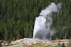 THE LION GEYSER ERUPTS AT THE UPPER GEYSER BASIN AT OLD FAITHFUL AT YELLOWSTONE NATIONAL PARK, WYOMING