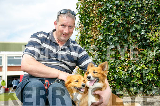 At the Kingdom County Fair in Ballybeggan on Sunday were Jerry O'Connor with Pudsey and Wally from Scartaglin