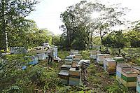 Commercial Beekeeping Australia