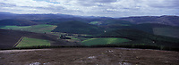 Europe/Grande-Bretagne/Ecosse/Moray/Speyside/Env de Dufftown : Lande
