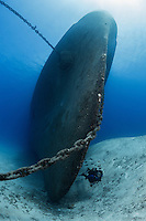 TR4526-D. scuba diver (model released) swims alongside USS Kittiwake at the bow of this sunken ship, which was a diver support vessel in the US Navy. Sunk deliberately in 2011 to make an artificial reef. Now one of the most popular dive sites on Grand Cayman Island. Cayman Islands, Caribbean Sea.<br /> Photo Copyright &copy; Brandon Cole. All rights reserved worldwide.  www.brandoncole.com