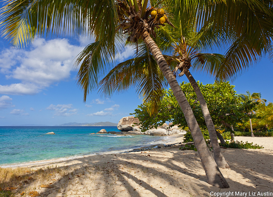 Virgin Gorda, British Virgin Islands, Caribbean <br /> Palm trees shade the beach on Spring Bay, Spring Bay National Park