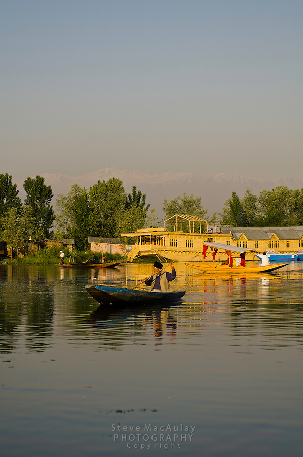 Man paddling traditional shikara on Dal Lake with Himalaya mountains in background, Srinagar, Kashmir, India.