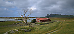 Farm at Waitangi West. Maunganui Mountain in background. Chatham Islands. New Zealand.