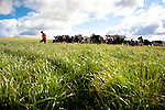 Sylvie Lamour, agricultrice dans le nord Bretagne est à la tête d'une exploitation laitière d'une soixantaine de Vaches, qu'elle exploite avec son mari. Elle est à l'origine de la création du collectif des agricultrices en colère