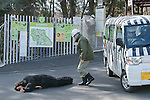 Zookeepers capture an escaped chimpanzee during an Escaped Animal Drill at Tama Zoological Park on February 7, 2017, Tokyo, Japan. The annual escape drill is held in Tokyo zoos for zookeepers to practice how they would need to react in the event of a natural disaster or another emergency. This year a member of staff wearing a chimpanzee costume was captured and subdued by other zookeepers before it could escape out onto the streets of Tokyo. During the drill, participants used large nets, sticks and tranquilizer guns to make sure the monkey didn't get away. (Photo by Rodrigo Reyes Marin/AFLO)
