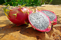 Fresh Dragon Fruit (Hylocereus undatus).