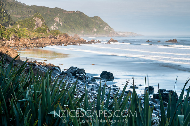 Morning on rugged coastline near Punakaiki, Paparoa National Park, West Coast, Buller Region, New Zealand