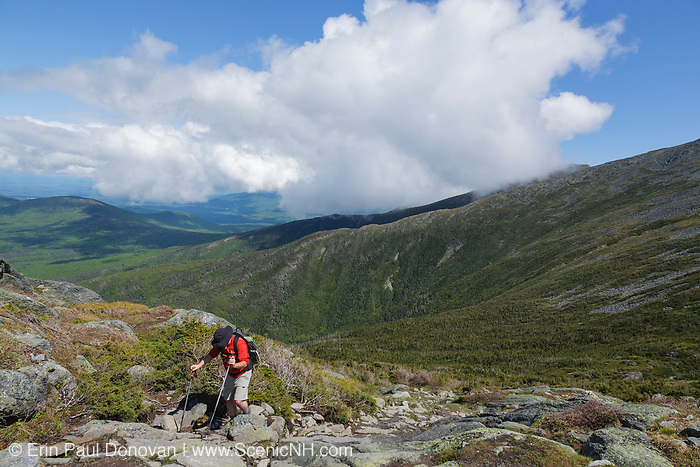 A hiker ascending the Ammonoosuc Ravine Trail in Sargent's Purchase of the New Hampshire White Mountains during the summer months.