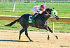 Goldland winning at Delaware Park on 10/12/15
