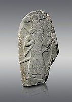 Hittite monumental relief sculpture of a God hunting, its hieroglyphic symbol is above its head. Late Hittite Period - 900-700 BC. Adana Archaeology Museum, Turkey. Against a grey background