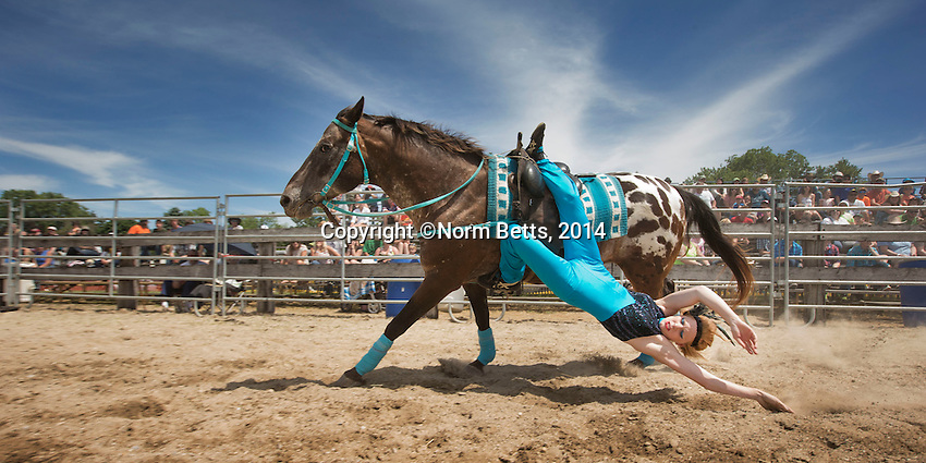 RODEO<br /> Images at the  2014 RAM Rodeo tour in Milverton, Ontario.<br /> photos by Norm Betts <br /> &copy;2014, Norm Betts<br /> tel 416 460 8743
