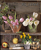 Interlitho-Alberto, FLOWERS, BLUMEN, FLORES, paintings+++++,tulips, shelf,KL16464,#f#, EVERYDAY