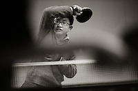 120717 Wellington Secondary Schools' Table Tennis