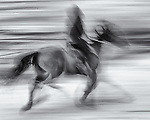 A horse and rider blaze across the snow creating a photographic gesture drawing.
