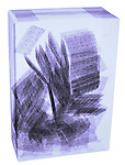 X-ray image of a box of wheat crackers (color on white) by Jim Wehtje, specialist in x-ray art and design images.