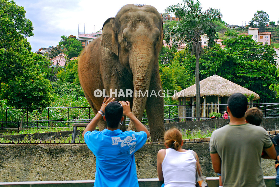Jardim Zoológico em São Cristóvão. Rio de Janeiro. 2007. Foto de Luciana Whitaker.