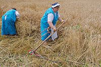 Participants compete during a traditional harvest festival in Opalyi (some 280 kilometers East of capital city Budapest), Hungary on July 13, 2013. ATTILA VOLGYI