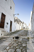 Un gatto davanti ai  trulli di Alberobello.<br /> A cat walks past some Trulli, typical beehive-shaped houses of Alberobello.<br /> UPDATE IMAGES PRESS/Riccardo De Luca