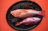 Red snapper, Pargo and lobsters the choice for lunch at restaurant chimeco in Bahia de San Agustin on the pacific coast of Oaxaca, National Park Huatulco, Oaxaca, Mexico