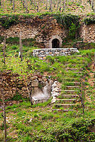 A detail in the Les Bessards vineyard, a flight of stairs and a grotto. The Hermitage vineyards on the hill behind the city Tain-l'Hermitage, on the steep sloping hill, stone terraced. Sometimes spelled Ermitage. Tain l'Hermitage, Drome, Drôme, France, Europe