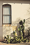 Close up of building with iron work across window with cactus growing outdoors in sunlight