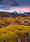 Patagonian landscape, El Chalten, Argentina