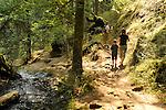Mountain Lake, Moran State Park, WA. Trail to Rustic Falls.