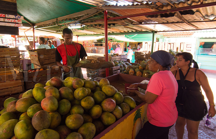 Havana Cuba local market of food for sale with local people buying items in Habana