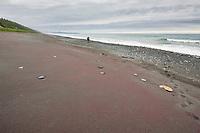 Hiker on the beach of the Gulf of Alaska, Pacific ocean coast, Glacier Bay National Park, Southeast, Alaska
