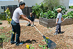 Berkeley CA Gardening teacher and students working together to grow vegetables in school's edible school yard