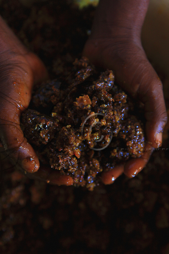 No centrifuges in the bush: the honey is extracted by pressing.