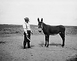 Jerome ID:  Businessman trying to sell a quality mule to Brady Stewart - 1909.  Brady Stewart and three friends went to Idaho on a lark from 1909 thru early 1912. As part of the Mondell Homestead Act, they received a land grant of 160 acres north of the Snake River.  For 2 ½  years, Brady Stewart photographed the adventures of farming along with the spectacular landscapes.