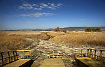A general view of a field - almost dried- in the national park of Las Tablas de Daimiel is pictured in Ciudad Real on November 16, 2009. The European Union launched an investigation into Spanish wetland that has turned bone dry through mismanagement of water resources  from areas where fish once swam. The EU wants the Spanish government to explain how it plans to save Las Tablas de Daimiel National Park.The park, one of Spain's few wetlands, is classified as a UNESCO biosphere site and an EU-protected area because of its birdlife. But it has been drying up for decades, largely because of wells dug by farmers on the edges of the park to tap an aquifer that feeds the wetland's lagoons. Many of the wells are illegal. Environmentalists call this case a particularly glaring example of how a natural resource can be abused. (c)Pedro ARMESTRE