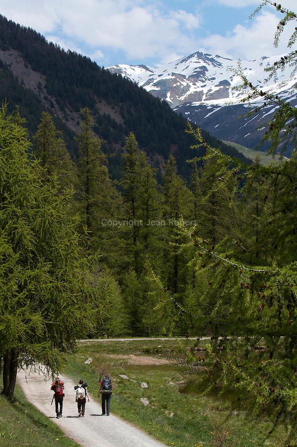 Randonneurs  pr&egrave;s du lac de Roue(2695 m) entre Arvieux et Chateau Queyras<br /> Trekkers nearby Roue lake between Arvieux valley and Chateau Queyras valley
