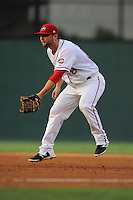 First baseman Sam Travis (28) of the Greenville Drive hops as he sets for a pitch in a game against the Charleston RiverDogs on Thursday, August 21, 2014, at Fluor Field at the West End in Greenville, South Carolina. Travis is a second-round pick of the Boston Red Sox in the 2014 First-Year Player Draft out of Indiana University. Charleston won, 12-0. (Tom Priddy/Four Seam Images)