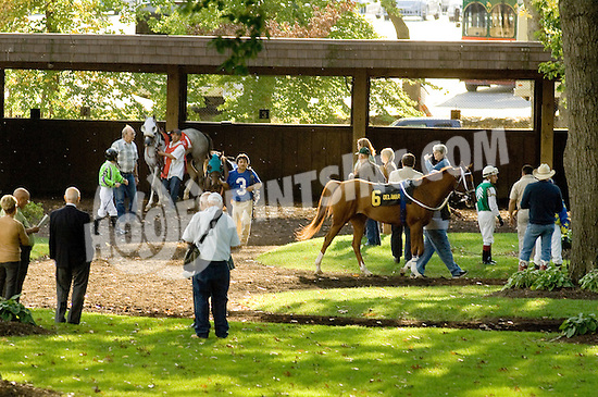 Paddock before The Distaff Claiming Crown Stakes at Delaware Park on 10/6/12