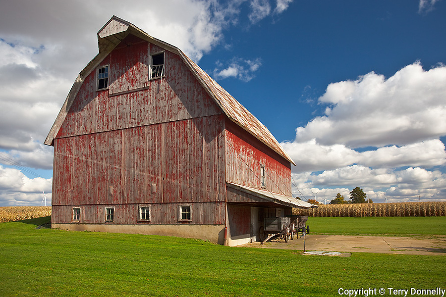 Bureau County, IL<br /> Weathered red barn under cumulus clouds
