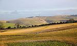 Chalk landscape view to Lansdowne monument, Cherhill, North Wessex Downs, Wiltshire, England, UK  near Calstone Wellington